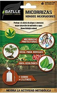 Amazon.es: hongos de la raiz - 1 estrella y más