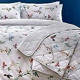 Dreams & Drapes - Mansfield - Juego de Funda de edredón, de fácil Cuidado, 52% poliéster, 48% algodón, Gris, Bedspread