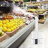TTLIFE Umidificatore ad ultrasuoni 5L, Umidificatori a nebbia fredda Umidificatore ad aria super silenzioso da 36 dB Macchina per la disinfezione della nebbia,generatore di Nebbia per Grandi stanze