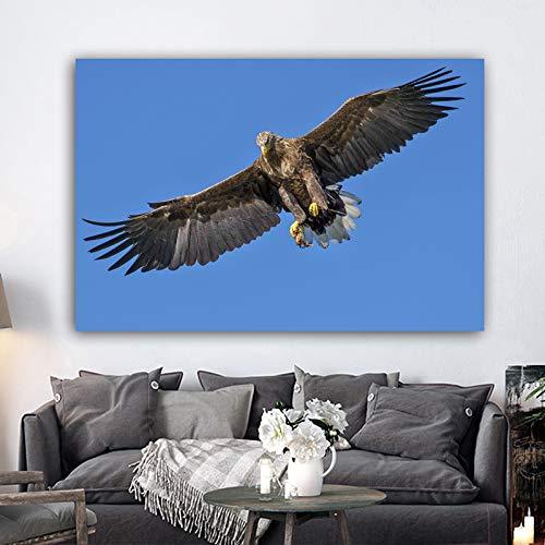 YHZSML Poster und Drucke Wandkunst Leinwand Malerei Animal Print Adler Wandbilder für Wohnzimmer Bilder Home Decoration 60x90cm