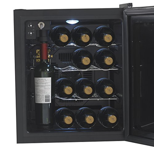 "Avanti WCP13-IS 18"" Wine Chiller Preserver/ Dispenser with 13 Bottle Wine Preservation Argon Gas Wine Preservation Thermoelectric Cooling System and Interior LED Lighting in"