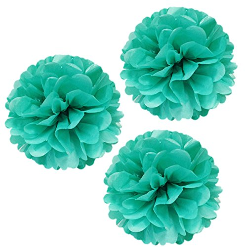 Wrapables Tissue Pom Poms Party Decorations for Weddings, Birthday Parties, Baby Showers and Nursery Decor, Aqua, 14-Inch, Set of 3