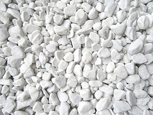 Doubleyou Geovlies & Baustoffe Gravier de marbre de Carrare Blanc Grain 18-25 mm 1-20 kg 1 kg Blanc.