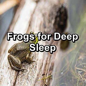 Frogs for Deep Sleep