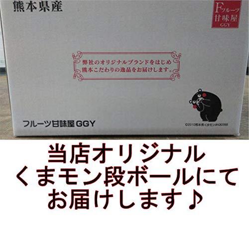 Y/Pシルクスイート秀品蔵出し約5kgサイズ【3L〜2S】さつまいも蜜芋熊本産【フルーツ甘味屋GGY】80サイズ