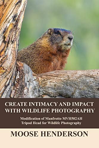 Create Intimacy and Impact with Wildlife Photography: Modifications of Manfrotto MVH502AH Tripod Head for Wildllife Photography (English Edition)