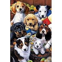 犬 - パズル500-6000大人の子供の教育玩具カラフルなライオンパズルジグソーパズルクリエイティブな家の装飾ギフト 0126 (Color : A, Size : 3000 pieces)