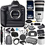 Canon 6Ave EOS-1D X DSLR Camera International Version (No Warranty) EF 300mm f/2.8L is II USM Lens + Battery Grip + LP-E6N Replacement Lithium Ion Battery Bundle