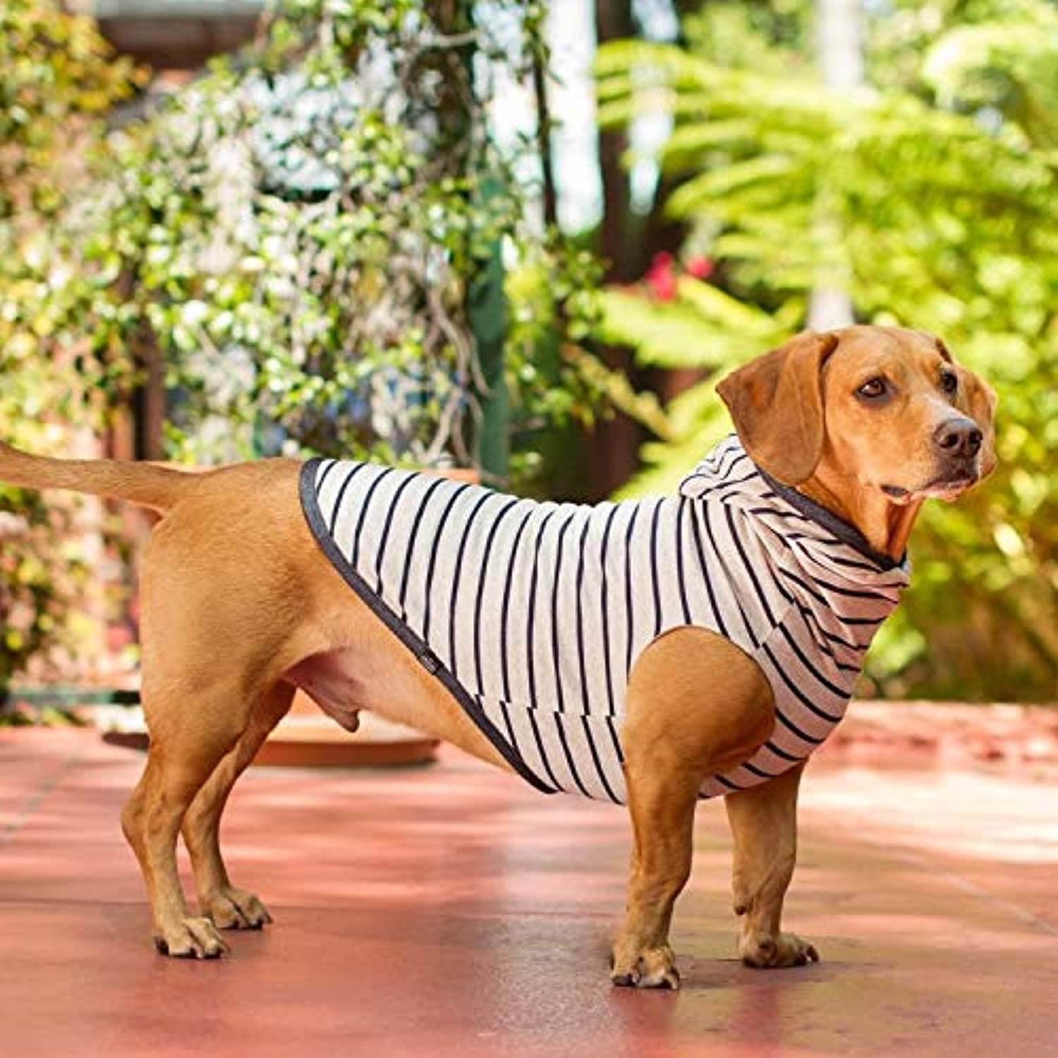 Long Dog Clothing Co. The Sailor Reversable Sweater M