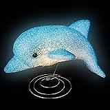 Dolphin Sparkle Lamp