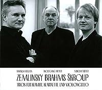 Trios fuer Klavier,Klarinette & Violoncello