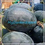 Negro de la piel gigante Wantermelon Semillas 8pcs / bag Semillas de frutas rojas del corazón del melón de agua casera de las semillas del jardín DIY Bonsai