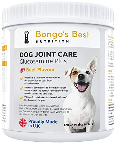 Mayfair Nutrition Dog Joint Supplements by Bongo's Best - Premium Glucosamine & Green Lipped Muscle Supplement for Dogs and Ages - Young or Old, Large or Small