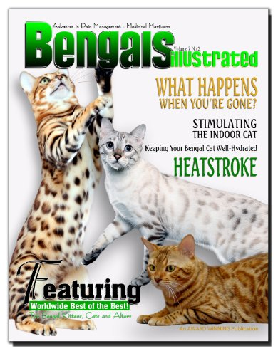 Bengals Illustrated -...