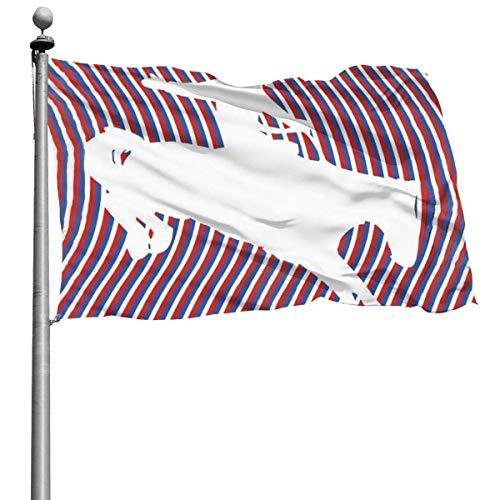 GOSMAO Bandera de Jardín Doble Costura Resistentes a la Decoloración UV Banner de Bandera Decorativo Exterior Fiesta Mardi Gras para Patio Césped Hombre a Caballo 150X90cm