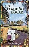 Un pequeño lugar (GEBARA) (Spanish Edition)