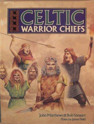 Celtic Warrior Chiefs (Heroes & Warriors)