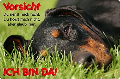 +++ DOBERMANN - Metall WARNSCHILD Schild Hundeschild Sign - DBM 34 T2