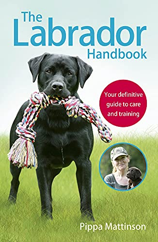 The Labrador Handbook: Your Definitive Guide to Care and Training