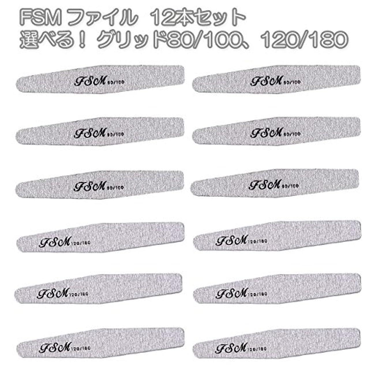 リーチ魅力インディカFSM ネイルファイル/バッファー12本セット(選べる!グリッド80/100、120/180) (G80/100の12本)