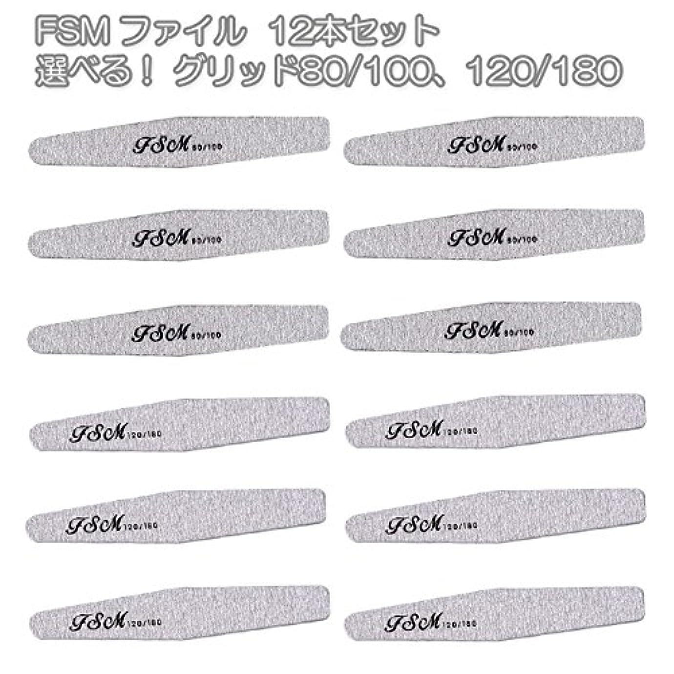 無線臭いもっとFSM ネイルファイル/バッファー12本セット(選べる!グリッド80/100、120/180) (G80/100の6本+G120/180の6本)