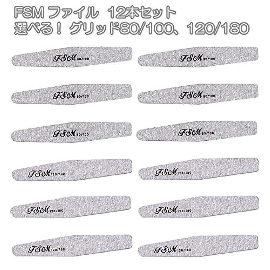 略語砂表示FSM ネイルファイル/バッファー12本セット(選べる!グリッド80/100、120/180) (G80/100の12本)
