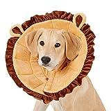 Best Dog Cones - Alfie Pet - Noah Recovery Collar Review