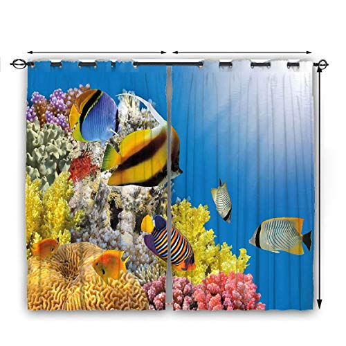 nooweihome Ocean Dark Curtain Coral Colony on a Reef Top in Red Sea Egypt Exotic Fishes Aquatic Underwater Life Suitable forThermal Insulated Blackout Patio Door Curtain Panel W55 x L45 Multicolor