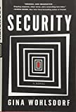 Image of Security: A Novel