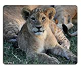 Yanteng Mouse Pad Gaming Mouse Pad Tappetino per Mouse in Gomma Naturale LionCub Set di Materiale in Gomma Naturale M0A12637