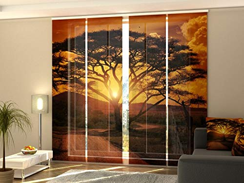 Wellmira Fotogardine, Flächenvorhang, Fotodruck, Schiebevorhang, Bedruckte Schiebegardinen, Gardine mit Motiv, auf Maß (4 x 245x60)