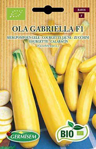 Germisem Orgánica Ola Gabriella F1 Calabacín 5 Semillas