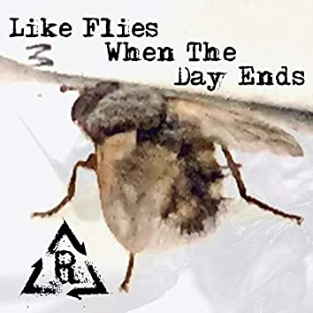 Like Flies When the Day Ends