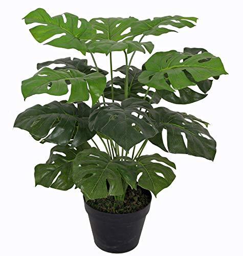 yanka-style Künstliche Mini Monstera mit Topf ca. 60 cm hoch Kunstpflanze künstliche Pflanze Kunstbaum Baum Bäumchen Blume Deko Dekoration Geschenk (JWS2063-6)