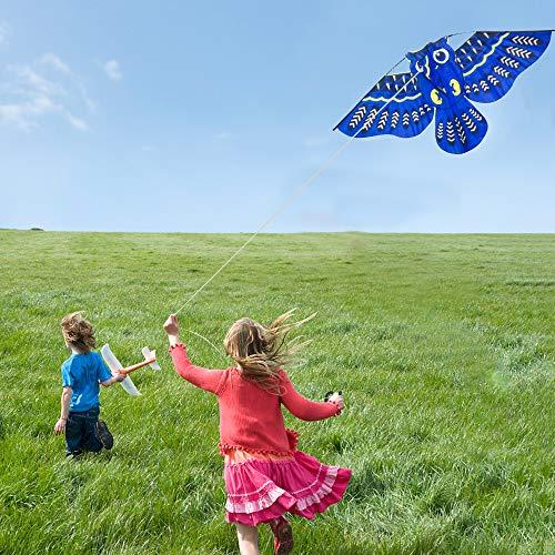 Wankd Kinder-Drachen - Eulen Drachen - Einleiner-Flugdrachen für Kinder ab 3 Jahren - 110x50cm - inkl. 60m Langer Drachenschnur (Blau)
