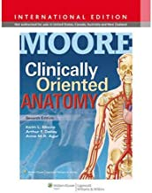 Clinically Oriented Anatomy 7th Edition by Keith L. Moore Anne - Paperback