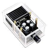 Módulo amplificador de potencia, Droking 30W+30W Clase AB Tablero de amplificador estéreo de audio digital, DC 12V Dual Channel 2.0 Inmersión Gold Car Speaker Amplify Chip con estuche y cable blindado