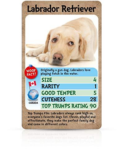 Winning Moves 001961 Top Trumps Hunde – Quartett Kartenspiel (Englische Edition), Lovable Dogs