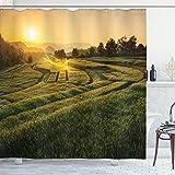 ABAKUHAUS Land Duschvorhang, Gersten-Holz-Sonnenuntergang, Seife Bakterie Schimmel & Wasser Resistent inkl. 12 Haken & Farbfest, 175 x 180 cm, Grün-gelben