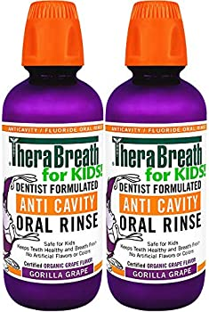 2-Pack TheraBreath Kids Anti-cavity Oral Rinse 16 Oz