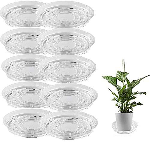 CDblue 10 Stück Runder Blumentopf Untersetzer Transparent Pflanzenuntersetzer aus Kunststoff Blumenuntersetzer für Garten Pflanzkübel Blumekübel Blumentopf Pflanztopf