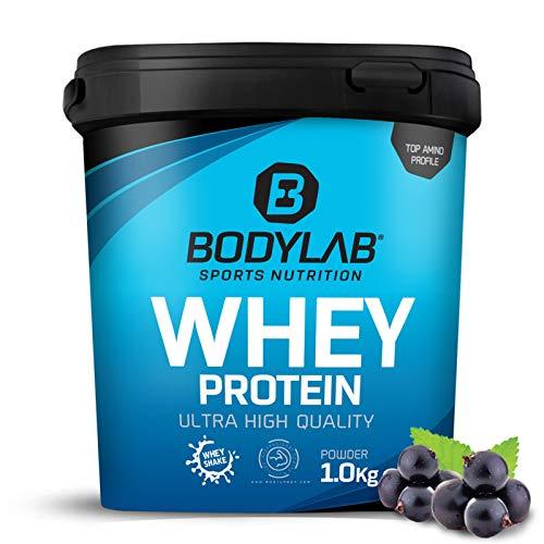 Protein-Pulver Bodylab24 Whey Protein Blaubeere 1kg / Protein-Shake für die Fitness / Whey-Pulver kann den Muskelaufbau unterstützen / Hochwertiges Eiweiss-Pulver mit 80% Eiweiß / Aspartamfrei