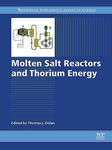Molten Salt Reactors and Thorium Energy (Woodhead Publishing Series in Energy) (English Edition)