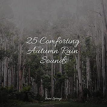 25 Comforting Autumn Rain Sounds