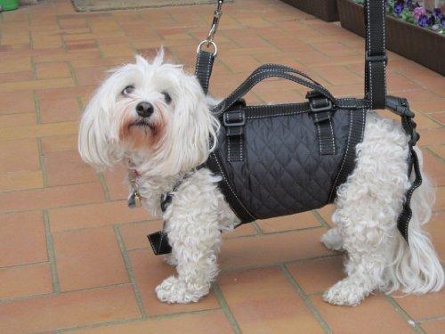 Tiffys-Tasche Größe 3, 45cm - 48cm Brustumfang. Das Original - 1000fach bewährt - jetzt aus deutscher Fertigung. Hoher Tragekomfort durch Polstermaterialien und gleichzeitig perfekter Halt und Sicherheit durch das patentierte Gurtsystem.