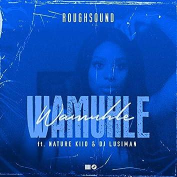 Wamuhle (feat. Naturekii & DjLusiman)