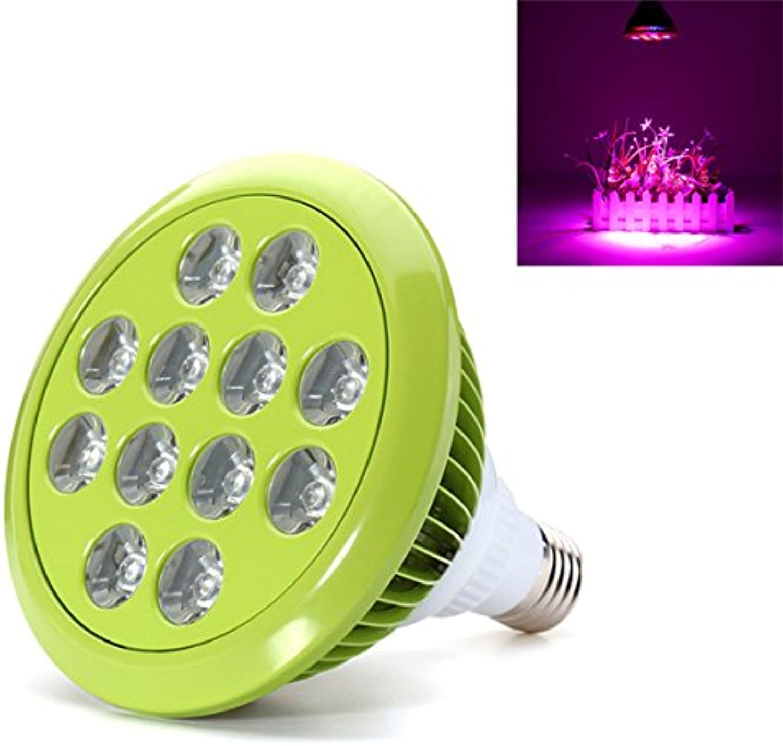 DADEQISH 12W   24W E27 LED-Pflanzenveg-Wasserkulturvolles Vollspektrum wachsen helle Innenlampe Innenlicht (Farbe   12W)