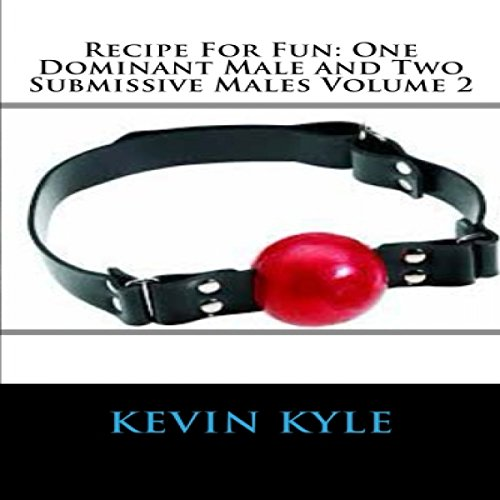 Recipe for Fun audiobook cover art