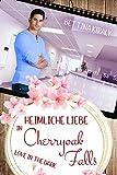 Heimliche Liebe in Cherryoak Falls: Love in the dark - Cherryoak Falls 2