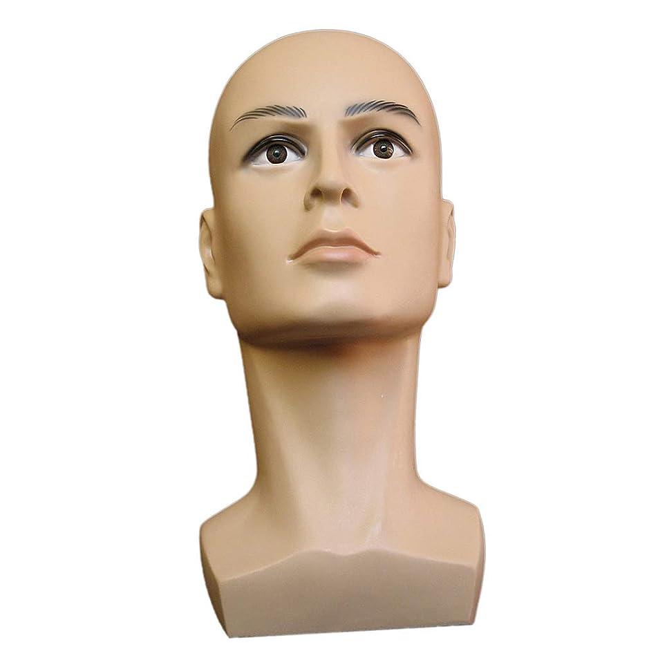 初期の意味する成長するマネキンヘッド 男性 ヘッド 頭部 モデル